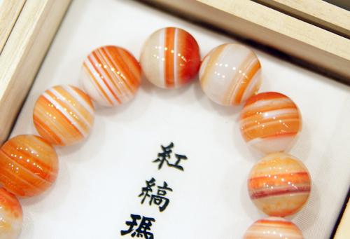 100421shima-meno2.jpg
