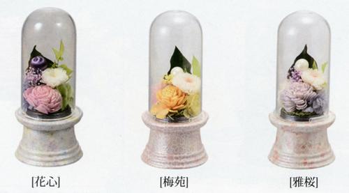 花摘2.jpg